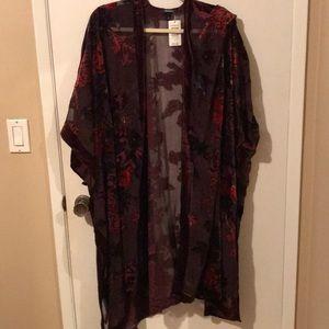 Torrid beautiful sheer and velvet kimono shawl